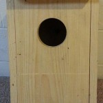 Kestrel box